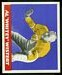 Al Wistert - 1948 Leaf football card #28