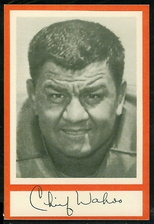 1967 Royal Castle Dolphins football card of Wahoo McDaniel