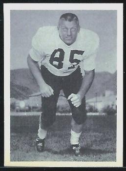 Joe Young 1961 Fleer Wallet Pictures football card