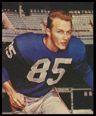 Del Shofner 1964 Kahns football card
