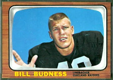 Bill Budness 1966 Topps football card