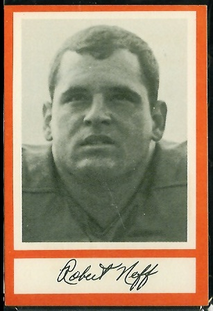Bob Neff 1967 Royal Castle Dolphins football card