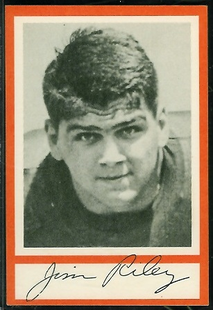 Jim Riley 1967 Royal Castle Dolphins football card