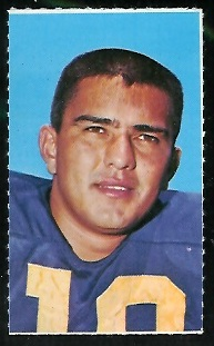 Roman Gabriel 1969 Glendale Stamps football card