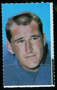 Steve Stonebreaker 1969 Glendale Stamps football card