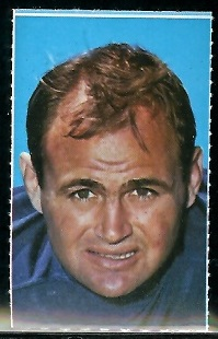 Don Shinnick 1969 Glendale Stamps football card