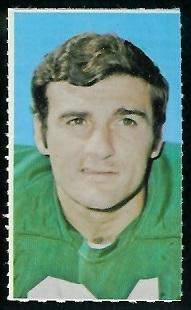 Joe Scarpati 1969 Glendale Stamps football card
