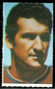 Gino Cappelletti 1969 Glendale Stamps football card