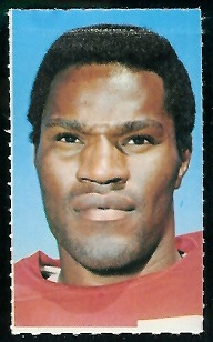 Jim Johnson 1969 Glendale Stamps football card