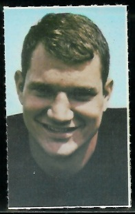 Bob Johnson 1969 Glendale Stamps football card