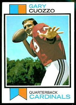 Gary Cuozzo 1973 Topps football card