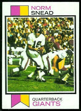 Norm Snead 1973 Topps football card