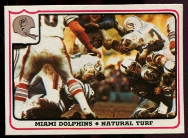 Miami Dolphins - Natural Turf 1976 Fleer Team Action football card